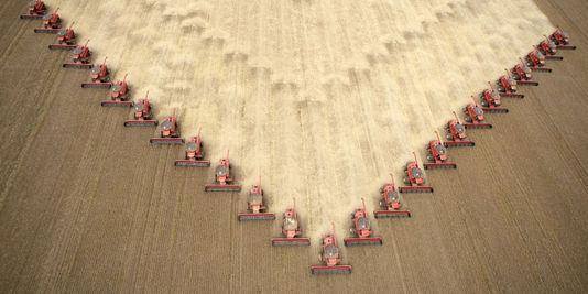1164703_3_92b8_des-agriculteurs-recoltent-du-soja-destine-a_70e2eafccd44021d3a38d72a111cc365.jpg